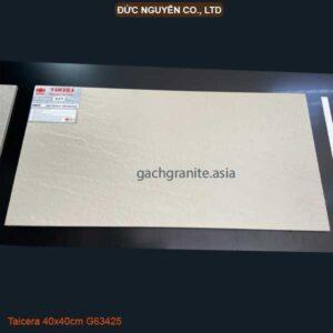 gạch Taicera G63425 30x60