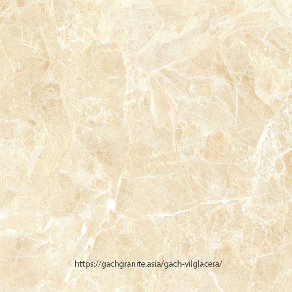 Gạch Viglacera 800x800 UB8802