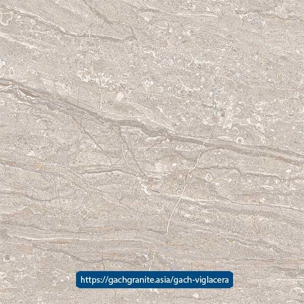 Gạch Viglacera 80x80 ECO-824