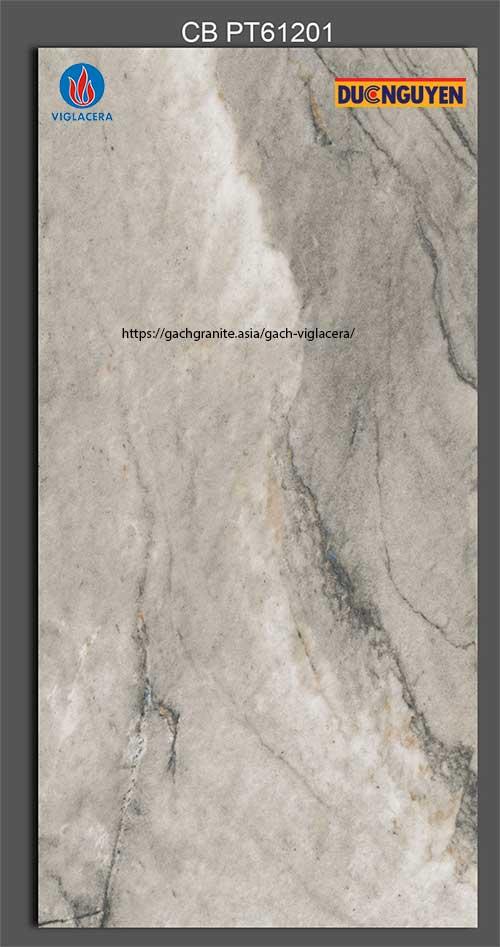 gạch platinum 60x120