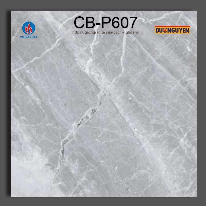 gạch platinum viglacera 60x60