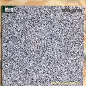 mẫu gạch lát nền mờ
