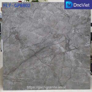 gạch viglacera gp8802