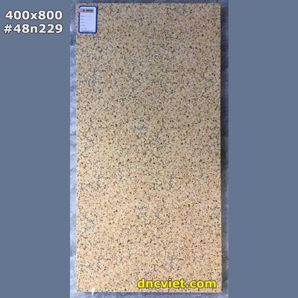 mẫu gạch gạch 40x80 48n229