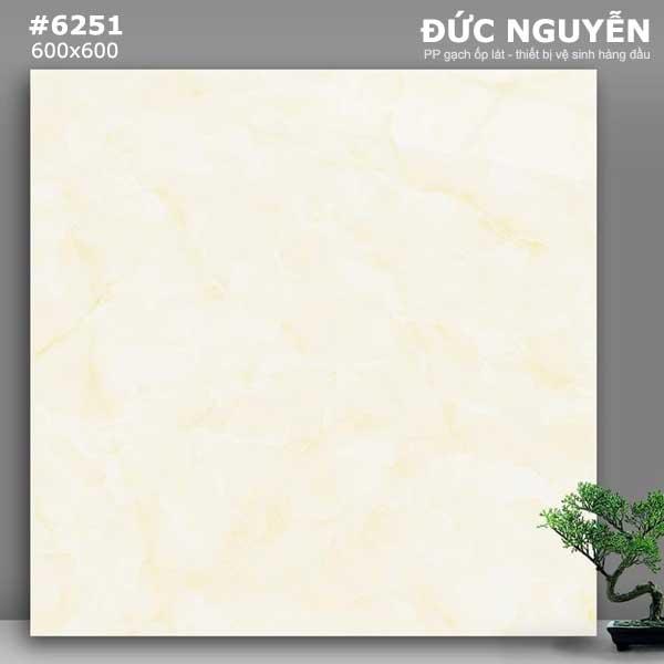 gạch lát nền 6251