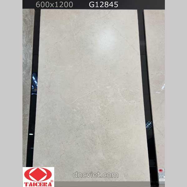 Gạch taicera G12845
