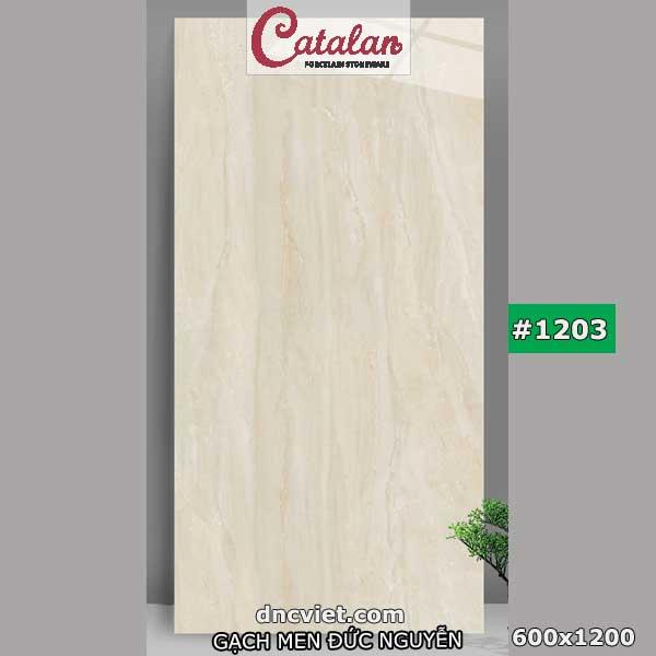 gạch 60x120 catalan 1203