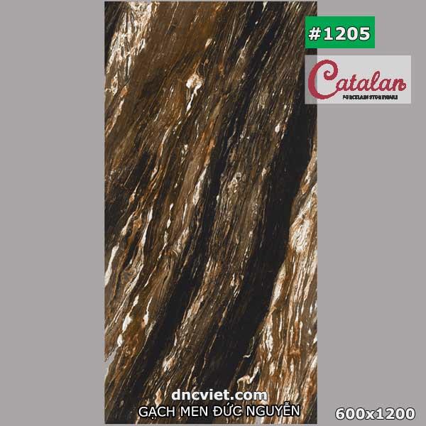 gạch 60x120 catalan 1205