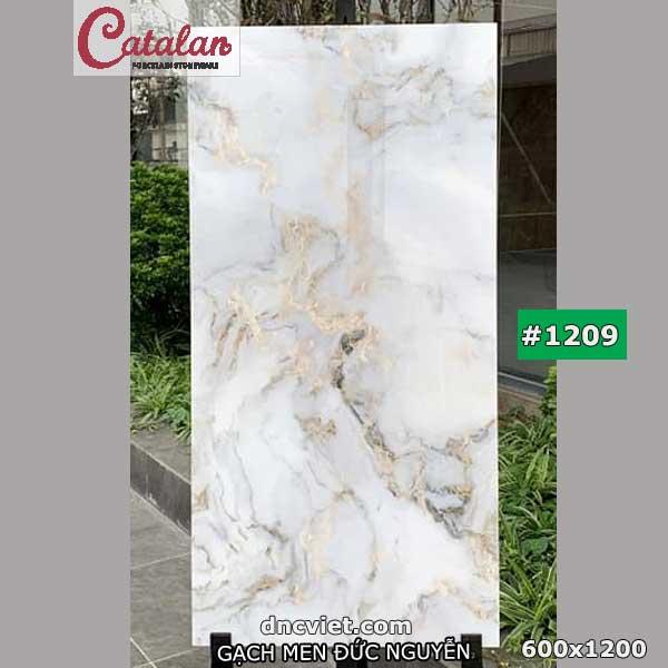 của gạch 60x120 catalan 1209