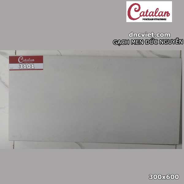 gạch ốp tường 30x60 catalan 3101