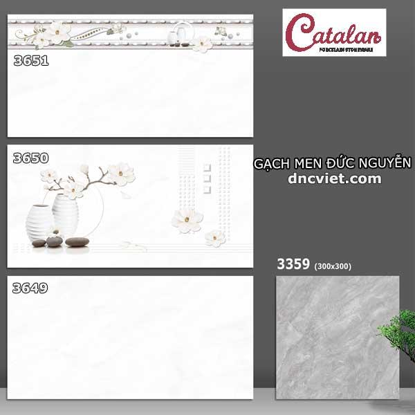 Bộ gạch ốp tường 30x60 catalan 3649