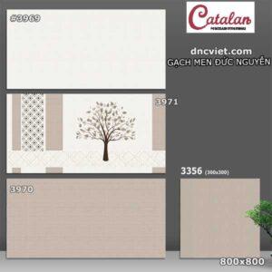 Bộ gạch ốp tường 30x60 catalan 3969