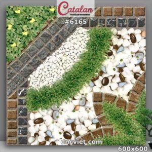 gạch lát sân vườn giả cỏ 60x60 catalan 6165