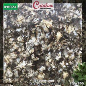 gạch ốp mặt tiền đẹp 80x80 catalan 8024
