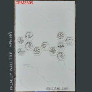 gạch ốp tường 30x60 crM3609
