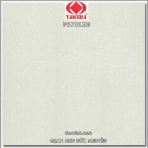 Gạch lát nền 60x60 taicera p67312n