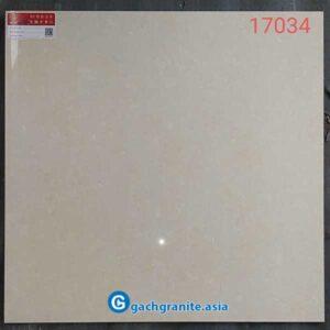 Gạch lát nền 60x60 prime 17034