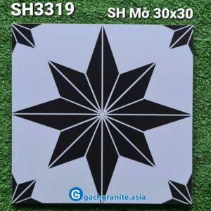 gạch bông ốp sàn 300x300 sh3319