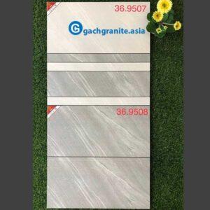 Gạch ốp tường 300x600 prime 9507