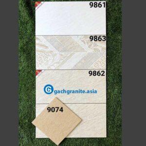 Gạch ốp tường 300x600 prime 9861